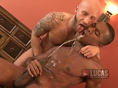 Black Stud Sean Xavier and Sexy Wolf Drake Jaden Piss and Fuck with Toys, Added: 2011-11-25, 00:00:36
