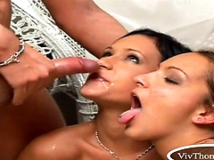 Tristan Seagal, Missy Nicole, Sabrina Sweet - 3 Way Split Part 1
