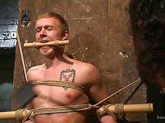 New sub endures bamboo torture!, Added: 2011-11-25, 00:00:43