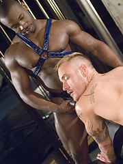 Alex Collack, Marc Williams and Nick Piston - interracial muscled threesome