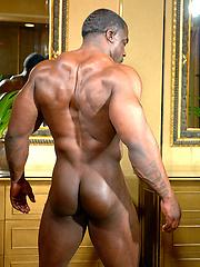 Chuck Basher