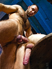 Hairy muscle hunks Ben Brown and Bruno Knight fucking
