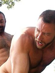 Muscle bears Shay Michaels and Brad Kalvo fucking