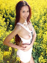 Colza field - Free porn pics. Sexhound.com