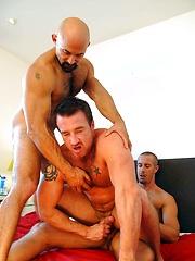 Hard Pounding Threesome