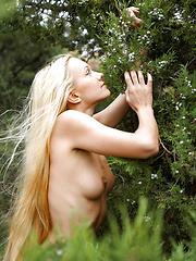 Desiree - Gentle Wind - Free porn pics. Sexhound.com