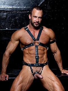 Muscle Men in Leather Porn Pics