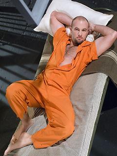 Gay Bald Pics